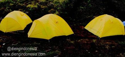 tenda dieng1